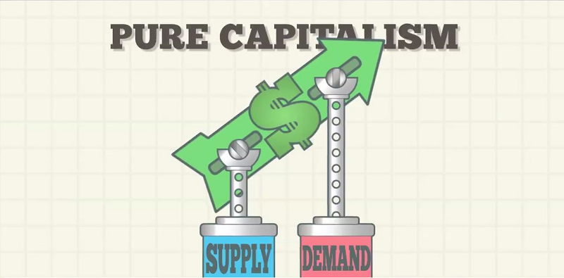 capitalist economic system