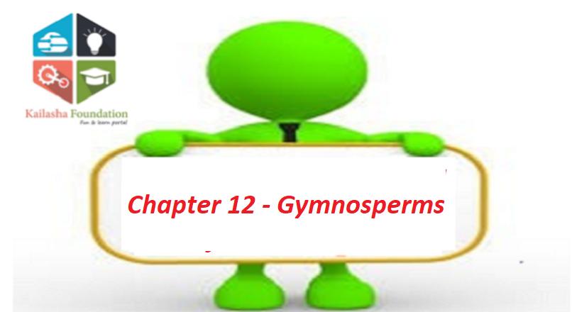 Chapter 12 – Gymnosperms