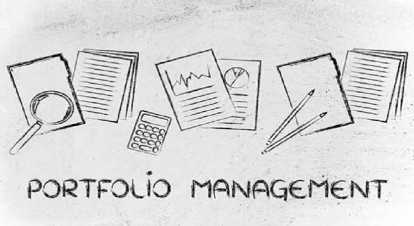 Portfolio Management: An Alternative to Insurance